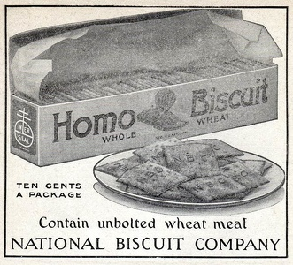 Homo Biscuits -1916A