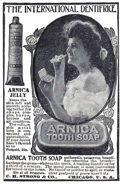 Arnica Tooth Soap -1906A.jpg