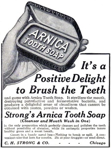 Arnica Tooth Soap -1912A