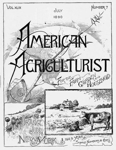 American Agriculturist 1890-07a