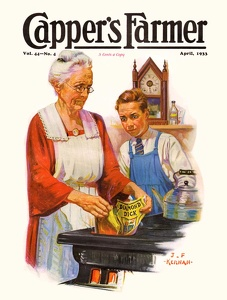 Capper's Farmer 1933-04