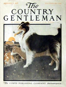 Country Gentleman 1916-09-02