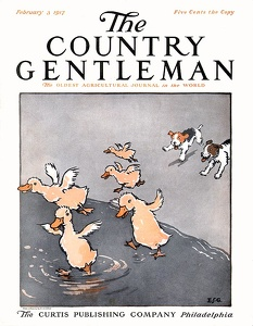 Country Gentleman 1917-02-03