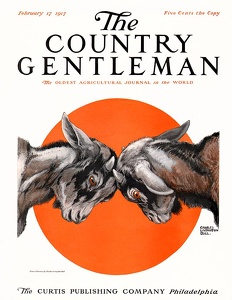 Country Gentleman 1917-02-17