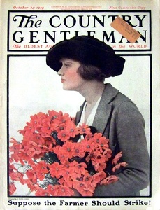 Country Gentleman 1919-10-25
