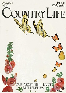 Country Life 1920-08
