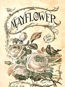Mayflower 1893-06