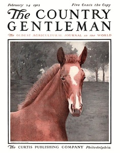 Country Gentleman 1912-02-24