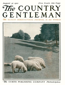 Country Gentleman 1912-08-31