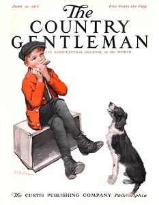 Country Gentleman 1916-06-10