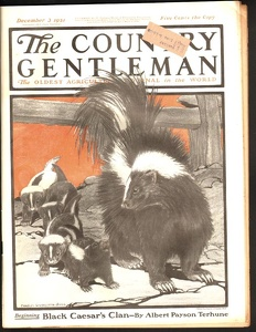 Country Gentleman 1921-12-03