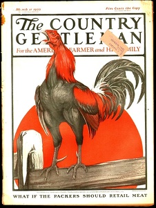 Country Gentleman 1922-03-11